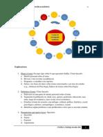Proceso de investigación.pdf