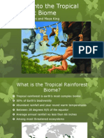 Tropical Rain Forest Biomes