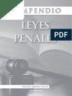 LEYES PENALES compendio