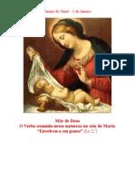 O Verbo Assumiu Nossa Natureza No Seio de Maria