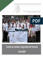 COCASEP (Comite para la Seguridad y Calidad del Paciente)