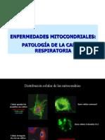 BQ21_patologia_mitocondrial