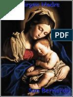 La Virgen Madre - San Bernardo