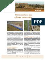 Hoja 31 Manejo.pdf