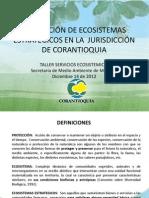 11 - Proteccion de ecosistemas estrategicos en la jurisdiccion de Corantioquia - copia.pdf
