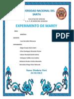 Experimento de Marey