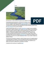 Descubrimiento Del Río Amazonas