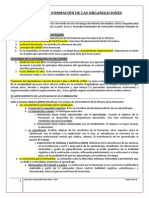 Tema 10 La Formación de Las Organizaciones