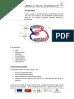 Manual Anatomia Sistema Venolinfático