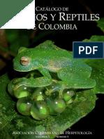 Anfibios y Reptiles en Colombia