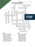 Crossword Puzzle (Ans)
