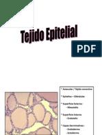 tejidoepitelial