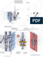Human Anatomy for Artists Tmk