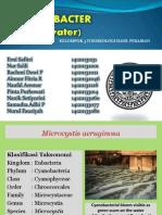 Toxin of Cyanobacter Fresh Water