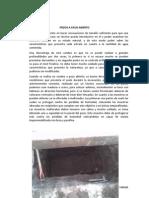 INFORME 1 ms II paul.docx