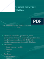 Patologia Genital Femenina Ultima