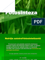 Fotosinteza plantelor
