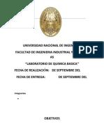 Informe de Laboratorio N° 1 Quimicas s (3)