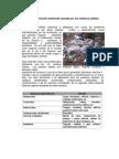 Contaminacion ambiental Perú