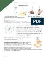 Ficha_6_Campo_magnetico.doc