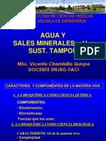 AGUA y SALES MINERALES bioquimica.ppt