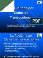 Auditoria IV Ciclos de Transacciones 2010 Expo