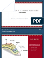 Meninges, LCR, Sistema Ventricular