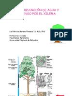 Cap3-Abs Agua y Trans Xile-2013NV