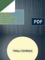 TRIGLISERIDA