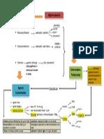 Diagrama de HyS