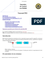 CTM_ Tutorial PID