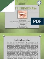Voz y Hormonas