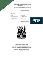 Laporan Praktikum Kimia Fisik KI