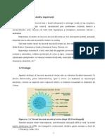 Enzootic Bovine Leucosis
