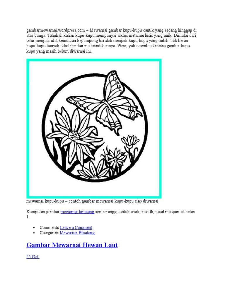 80 Gambar Stilasi Hewan Kupu Kupu Gratis Terbaru