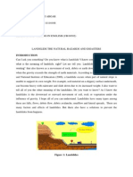 Full Essay of Lanslide