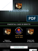 Parental care in insects