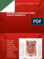 Ingrijirea Pacientilor Cu Sonda Urinara Permanenta