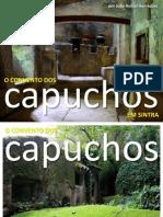 O Convento dos Capuchos em Sintra - por João Aníbal Henriques