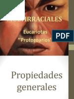 Eucariotas (Protozoarios)