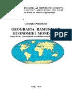 Geografie economica