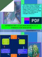 aportesdelaneurocienciaalapedagogia-120326172454-phpapp02