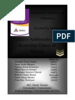 Factores de Riesgos para desarrollar cancer de pulmón (2).docx