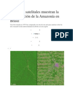 Imágenes Satelitales Muestran La Deforestación de La Amazonía en Brasil