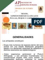 Miasis, Lepidosterismo, Pulgas, Piojos y Garrapatas
