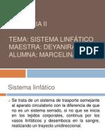 Sistema Linfatico.