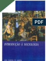 Introduçao Sociologia I
