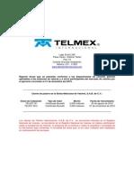Reporte Anual TELINT Ejercicio Social 2010