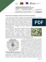 A I - Tema 3_1 - Ficha # 2.docx