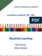 Bacteria Leaching.ppt